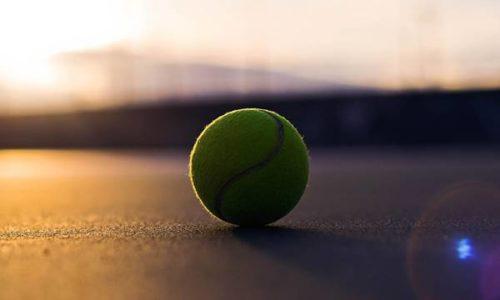 テニス テニスボール