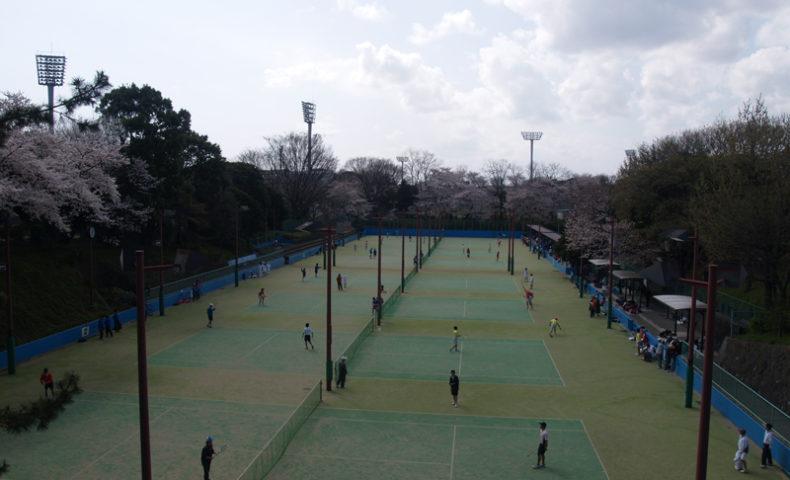 テニス サイト