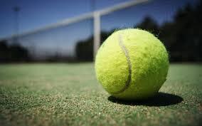 テニス 大学
