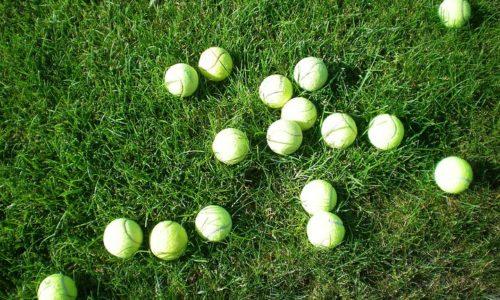 テニス 気付き